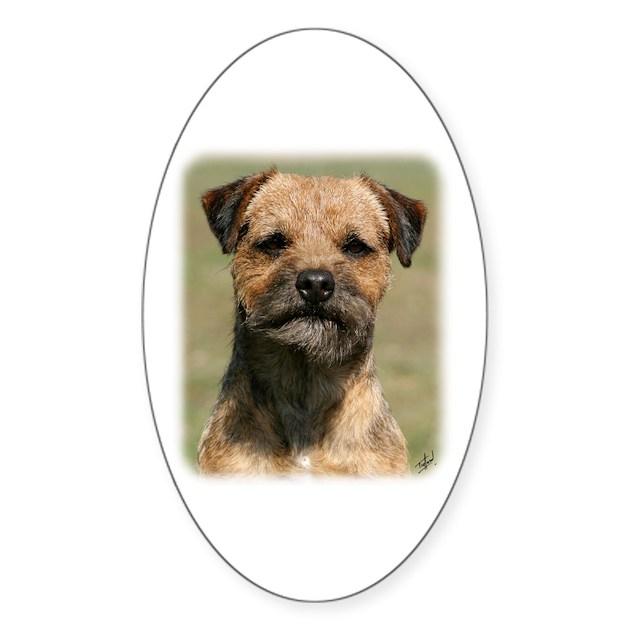border terrier colour guide