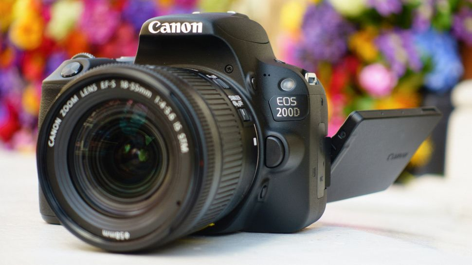 canon camera buying guide